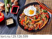 Купить «delicious korean dish Japchae: on a black plate», фото № 29126599, снято 29 августа 2018 г. (c) Oksana Zh / Фотобанк Лори
