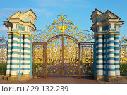 Купить «St. Petersburg. Tsarskoye Selo (Pushkin). View of the Golden Gate - the main entrance to the Catherine Palace at sunset in the summer afternoon (before the restoration of 2018)», фото № 29132239, снято 7 сентября 2018 г. (c) Виктория Катьянова / Фотобанк Лори