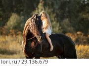 Little girl with black friesian stallion at summer evening. Стоковое фото, фотограф Julia Shepeleva / Фотобанк Лори
