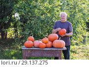 Купить «elderly men with pumpinks outdoor», фото № 29137275, снято 21 сентября 2018 г. (c) Майя Крученкова / Фотобанк Лори