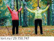 Купить «Mature woman doing gymnastics in an autumn park after a scandinavian walk», фото № 29150747, снято 30 сентября 2018 г. (c) Константин Шишкин / Фотобанк Лори