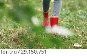 Купить «young woman picking mushrooms in autumn forest», видеоролик № 29150751, снято 24 сентября 2018 г. (c) Syda Productions / Фотобанк Лори