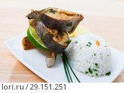 Купить «Baked trout steaks with rice», фото № 29151251, снято 23 апреля 2019 г. (c) Яков Филимонов / Фотобанк Лори