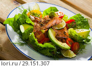 Appetizing fish salad with roasted trout. Стоковое фото, фотограф Яков Филимонов / Фотобанк Лори