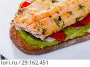 Купить «Bread with trout fillet, guacamole, vegetables», фото № 29162451, снято 16 октября 2018 г. (c) Яков Филимонов / Фотобанк Лори