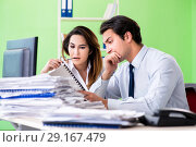 Купить «Two colleagues working in the office», фото № 29167479, снято 11 июня 2018 г. (c) Elnur / Фотобанк Лори