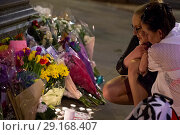 Купить «People of Manchester pay their respects at a candle lit vigil in Albert's Square. Featuring: candle lit mourners Where: Manchester, United Kingdom When: 23 May 2017 Credit: Euan Cherry/WENN.com», фото № 29168407, снято 23 мая 2017 г. (c) age Fotostock / Фотобанк Лори