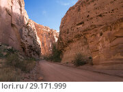 Dirt road to the gorge between the red rocks. Capitol Reef National Park, Utah, USA (2014 год). Стоковое фото, фотограф Ирина Кожемякина / Фотобанк Лори
