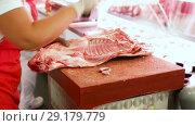 Close-up of butcher cutting quality porks in butcher's shop. Стоковое видео, видеограф Яков Филимонов / Фотобанк Лори