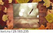 Купить «Autumn leaves frame and screen showing falling autumn leaves 4k», видеоролик № 29183235, снято 22 мая 2019 г. (c) Wavebreak Media / Фотобанк Лори