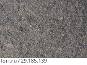 Купить «Поверхность вулканического камня», фото № 29185139, снято 12 сентября 2018 г. (c) А. А. Пирагис / Фотобанк Лори