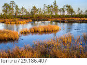 Купить «Осенний пейзаж», фото № 29186407, снято 5 октября 2018 г. (c) Икан Леонид / Фотобанк Лори