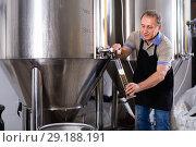 Купить «Brewer is checking the quality of beer in flask indoor.», фото № 29188191, снято 18 сентября 2017 г. (c) Яков Филимонов / Фотобанк Лори