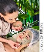 Купить «Mud facial mask of woman in spa salon. Cleansing purifying.», фото № 29188875, снято 19 марта 2017 г. (c) Gennadiy Poznyakov / Фотобанк Лори