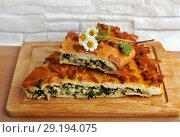 Купить «Fresh baked traditional pie with green onions and eggs», фото № 29194075, снято 28 мая 2020 г. (c) ElenArt / Фотобанк Лори