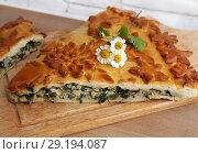 Купить «Fresh baked traditional pie with green onions and eggs», фото № 29194087, снято 19 ноября 2018 г. (c) ElenArt / Фотобанк Лори