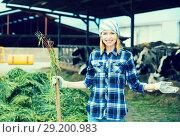 Купить «Farmer collecting grass with pitchfork», фото № 29200983, снято 18 января 2019 г. (c) Яков Филимонов / Фотобанк Лори
