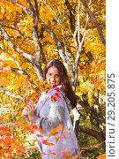 Купить «Девушка любуется осенними листьями в парке», фото № 29205875, снято 1 октября 2018 г. (c) Момотюк Сергей / Фотобанк Лори