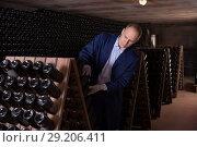 Купить «Wine producer controlling wine aging in winery vault», фото № 29206411, снято 22 января 2018 г. (c) Яков Филимонов / Фотобанк Лори