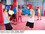 Купить «Two young boxer wearing gloves and helmet sparring», фото № 29206587, снято 12 апреля 2017 г. (c) Яков Филимонов / Фотобанк Лори