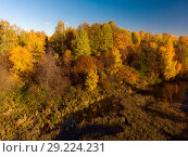 Купить «landscape with golden autumn and overgrown pond», фото № 29224231, снято 11 октября 2018 г. (c) Володина Ольга / Фотобанк Лори