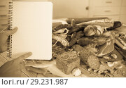 Купить «Variety of meats on table», фото № 29231987, снято 18 октября 2018 г. (c) Яков Филимонов / Фотобанк Лори