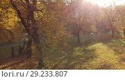 Купить «Moscow, Russia - October 14. 2018. Izmaylovo Park and pond traditional place walks Muscovites», видеоролик № 29233807, снято 25 мая 2019 г. (c) Володина Ольга / Фотобанк Лори