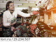 Купить «Woman looking for vegetables in farmers market», фото № 29234507, снято 13 февраля 2018 г. (c) Яков Филимонов / Фотобанк Лори