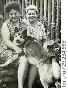 Купить «Пожилые женщины с собакой на даче. 1971», фото № 29234999, снято 17 октября 2018 г. (c) Retro / Фотобанк Лори