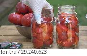 Купить «Preparation for the preparation of red pepper», видеоролик № 29240623, снято 29 августа 2018 г. (c) Kozub Vasyl / Фотобанк Лори