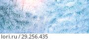 Купить «Зимний фон», фото № 29256435, снято 3 декабря 2016 г. (c) Икан Леонид / Фотобанк Лори