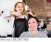 Купить «Woman hairdresser is doing hairstyle and cut by means of scissors», фото № 29257163, снято 7 марта 2017 г. (c) Яков Филимонов / Фотобанк Лори