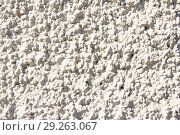 Купить «gypsum wall texture», фото № 29263067, снято 20 мая 2018 г. (c) Акиньшин Владимир / Фотобанк Лори