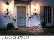 Купить «The house is decorated for Halloween: Huge black spiders crawl around the house, and on the path there is a resting human skeleton with the dog's skeleton.. Night, Houston, Texas, United States», фото № 29275559, снято 18 октября 2018 г. (c) Ирина Кожемякина / Фотобанк Лори