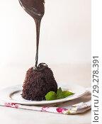 Купить «to pour chocolate cake with chocolate syrup and mint leaves on a white plate», фото № 29278391, снято 26 августа 2016 г. (c) Tetiana Chugunova / Фотобанк Лори