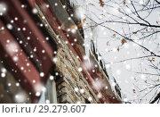 Купить «icicles hanging from building roof», фото № 29279607, снято 11 ноября 2016 г. (c) Syda Productions / Фотобанк Лори