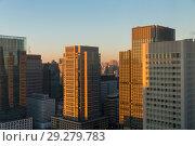 Купить «skyscrapers or office buildings in tokyo city», фото № 29279783, снято 7 февраля 2018 г. (c) Syda Productions / Фотобанк Лори