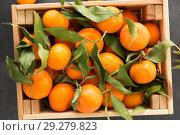 Купить «close up of mandarins on slate table top», фото № 29279823, снято 4 апреля 2018 г. (c) Syda Productions / Фотобанк Лори