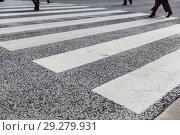 Купить «close up of crosswalk road surface marking», фото № 29279931, снято 10 февраля 2018 г. (c) Syda Productions / Фотобанк Лори