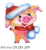 Купить «Улыбающийся поросенок в новогодней шапочке и шарфике. Символ Нового 2019 года по китайскому календарю», эксклюзивная иллюстрация № 29281299 (c) Александр Павлов / Фотобанк Лори