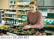 Купить «Woman choosing potatoes among different varieties», фото № 29289451, снято 16 февраля 2019 г. (c) Яков Филимонов / Фотобанк Лори