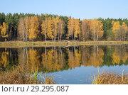 Купить «Красивый осенний пейзаж с рекой», фото № 29295087, снято 17 октября 2018 г. (c) Елена Коромыслова / Фотобанк Лори