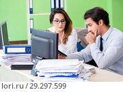 Купить «Two financial specialists working in the office», фото № 29297599, снято 11 июня 2018 г. (c) Elnur / Фотобанк Лори