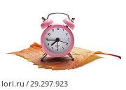 Купить «Розовый будильник стоит на осеннем желтом листке на белом фоне», фото № 29297923, снято 25 октября 2018 г. (c) Элина Гаревская / Фотобанк Лори