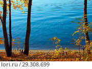 Купить «Осенний яркий пейзаж с березами над рекой», фото № 29308699, снято 17 октября 2018 г. (c) Татьяна Белова / Фотобанк Лори