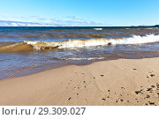 Купить «Lake Baikal. Water landscape with a beautiful sandy beach in the Sarayskiy Bay on the island of Olkhon on a windy autumn day», фото № 29309027, снято 14 октября 2018 г. (c) Виктория Катьянова / Фотобанк Лори