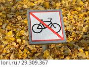 """Купить «Табличка """"Движение на велосипедах запрещено"""" на фоне опавших желтых листьев», эксклюзивное фото № 29309367, снято 18 октября 2018 г. (c) lana1501 / Фотобанк Лори"""