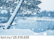 Купить «Зимний пейзаж», фото № 29310635, снято 23 октября 2018 г. (c) Икан Леонид / Фотобанк Лори
