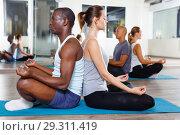 Купить «Sporty females and males meditating in yoga position Padmasana in pairs during training at gym», фото № 29311419, снято 30 июля 2018 г. (c) Яков Филимонов / Фотобанк Лори