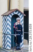 Купить «Prague Castle Guards on duty outside one of the main gateways. Czech Republic», фото № 29315659, снято 28 января 2018 г. (c) Николай Коржов / Фотобанк Лори